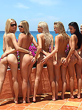 alsangels, passion paradise 09 lots of beach pussy girls